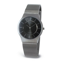 Buy Skagen Gents Titanium Watch 233LTTM online