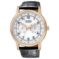 Buy Citizen Gents Vintage Strap Rose Gold Tone Watch AO9003-16A online