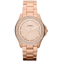 Buy Fossil Ladies Retro Traveller Watch AM4454 online