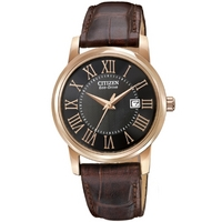 Buy Citizen Ladies Ladies Strap Watch EW1569-01E online