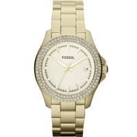 Buy Fossil Ladies Retro Traveller Watch AM4453 online