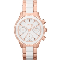 Buy DKNY Ladies Ceramix Watch NY8825 online