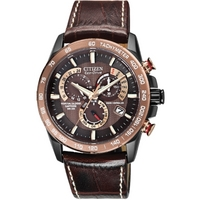 Buy Citizen Gents Perpetual Chrono A.T Watch AT4006-06X online