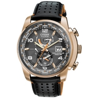 Buy Citizen Gents World Time A T Watch AT9013-03H online