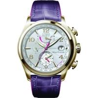 Buy Citizen Ladies Ladies World Time A T Chronograph Watch FC0003-00D online