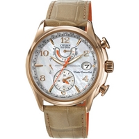 Buy Citizen Ladies Ladies World Time A T Chronograph Watch FC0003-18D online