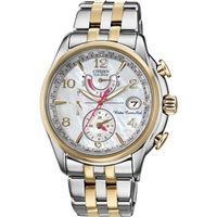 Buy Citizen Ladies Ladies World Time A T Chronograph Watch FC0004-58D online