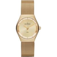 Buy Skagen Ladies Classic Watch SKW2045 online