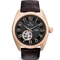 Buy Mens Bulova BVA Series 125 Automatic Watch 97A104 online