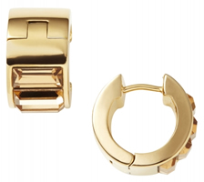 Buy DKNY NJ1815040 Ladies Earrings online