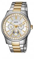 Buy Esprit Starlite Ladies Day-Date Display Watch - ES105442002 online