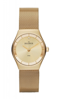Buy Skagen Klassik Ladies Swarovski Crystal Watch - SKW2045 online