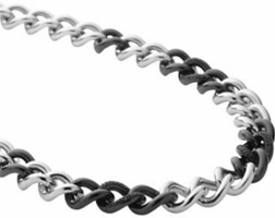 Buy DKNY Ladies Ceramic Stone Set Necklace - NJ1720040 online