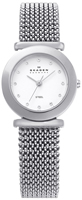 Buy Ladies Silver Expandable Skagen Watch online