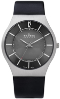 Buy Mens Stainless Steel Skagen Leather Watch online
