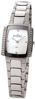 Buy Ladies Skagen Stone Set Silver Watch online
