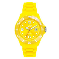 Buy Unisex Ice Watches SIYWSS09 Watches online