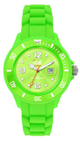 Buy Unisex Ice SIGNSS09 Watches online