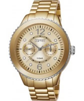 Buy Esprit Ladies Marin Aluminium Speed Gold Watch online