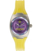 Buy Animal Ladies Jelli Kelli Yellow Watch online
