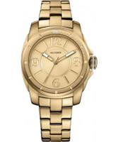 Buy Tommy Hilfiger Ladies Gold Kelsey Watch online